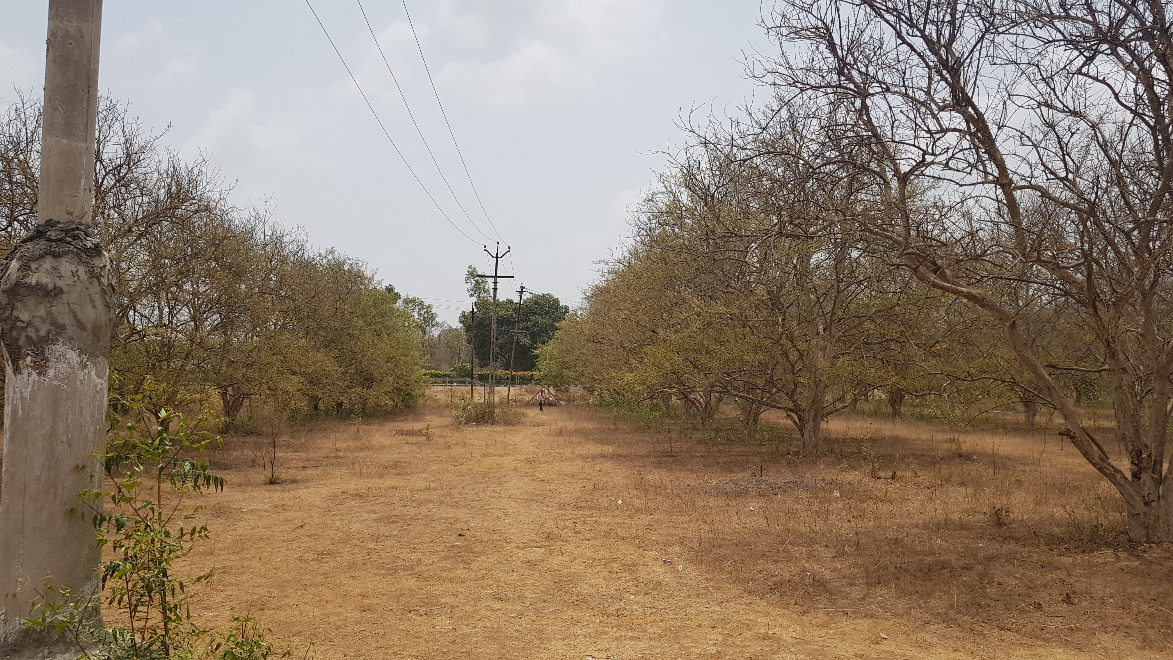 Industrial Land for sale near Anand